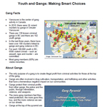 Youth and Gangs Factsheet