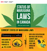 Current Cannabis Laws